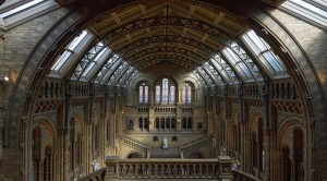 """Die Eingangshalle (""""Main Hall"""") des Natural History Museum."""