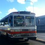 Die Busse von Suva folgen keinen Fahrplänen. Sie kommen einfach.
